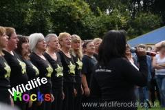 wildlife_rocks_2012_13_20160801_1371587956