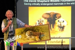 wildlife_rocks_2012_2_20160801_1508444551