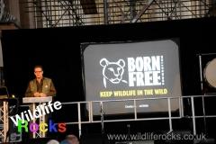 wildlife_rocks_2012_4_20160801_1318867456